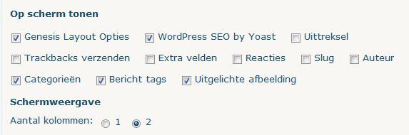 WordPress Bericht Scherminstellingen
