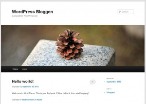 Je Eigen WordPress Website klaar voor gebruik